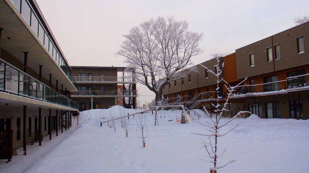 L'hiver est tranquille (et mouvementé) à Cohabitat.