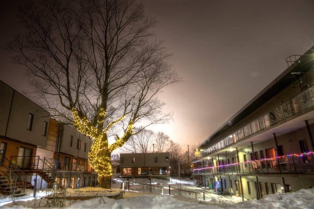 Les lumières du premier Noël de Cohabitat. Ça brille, ça scintille!