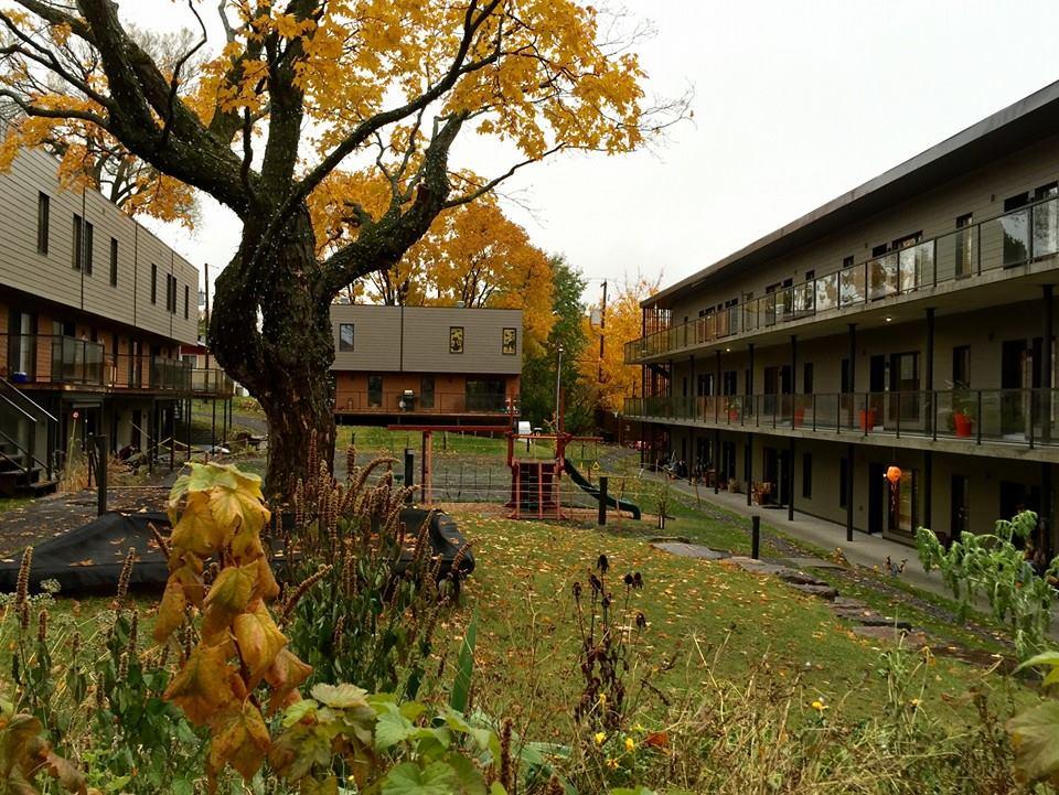 L'automne est toujours très magnifique, sur les terrains de Cohabitat.